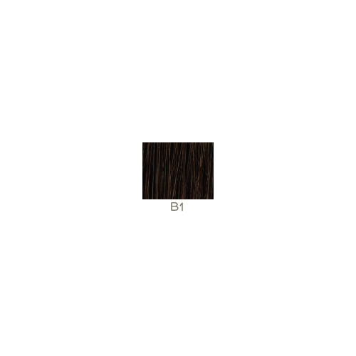 Clips 2 x 15cm - 45 cm - 100% Human Hair Remy